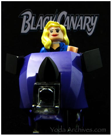 DC black Canary custom  mini fig