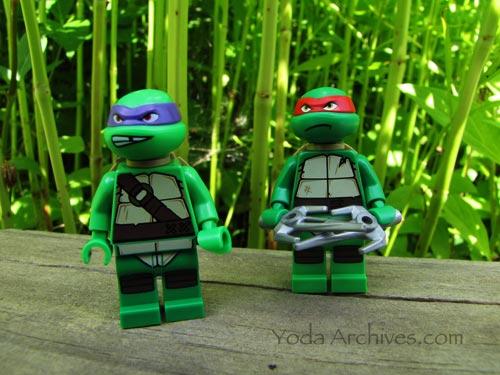 turtles in the garden