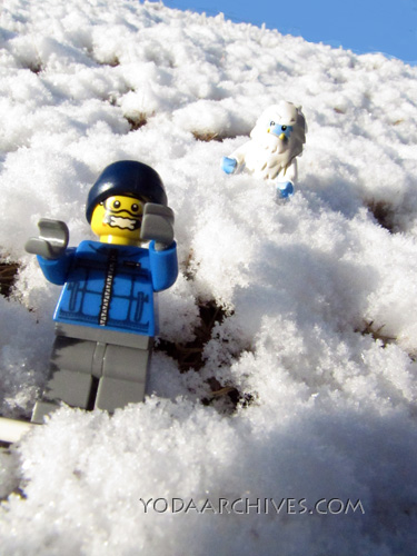 snow  borad finds a yeti