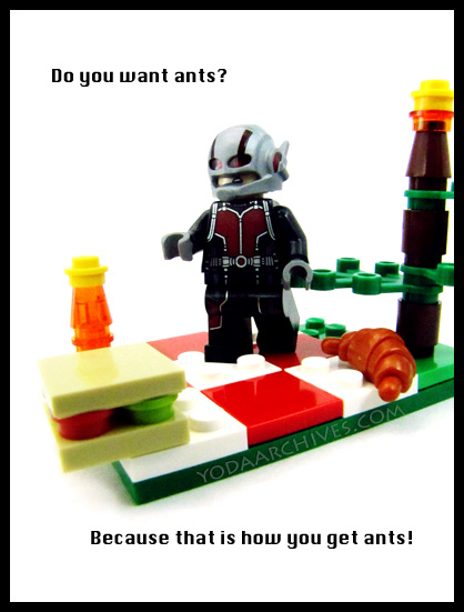 Ant man at a picnic asking do you want ants cause that how you get ants