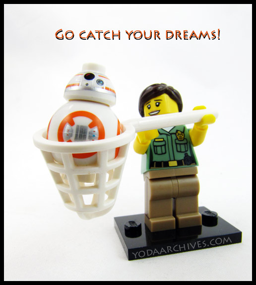 BB-8 catch in a zoo keepers net with the caption catch your dreams