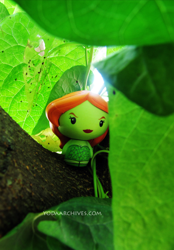 poison ivy pint size hero in leaves.