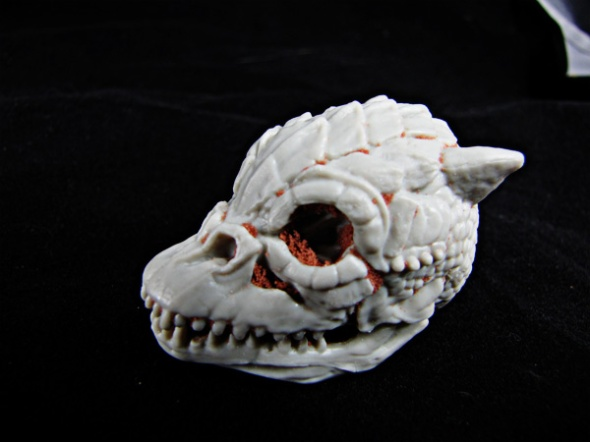 Trandashan skull