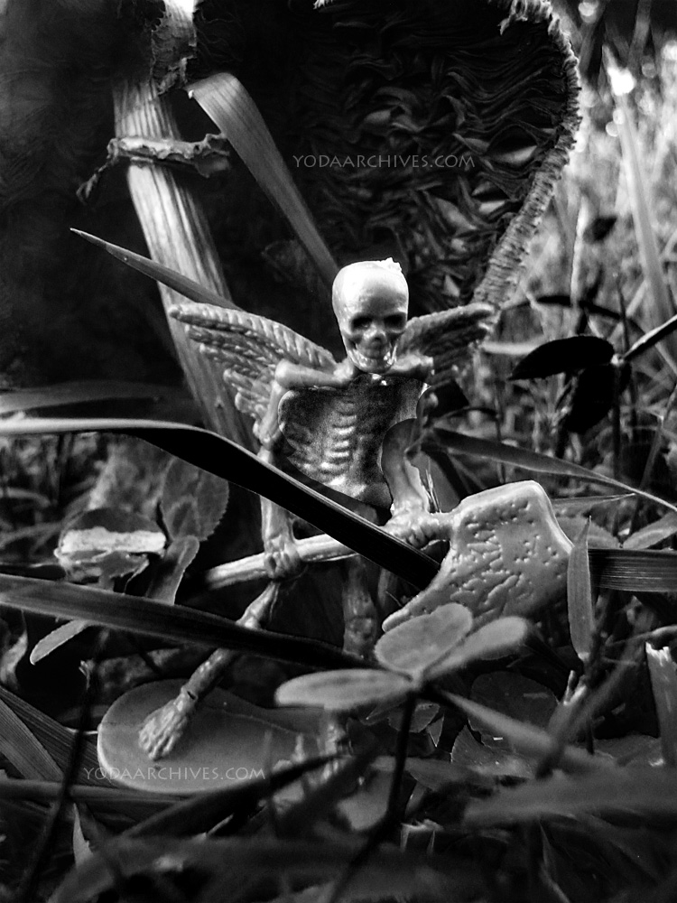 fairy skeleton with wings carrying an axe. Walking under a mushroom.