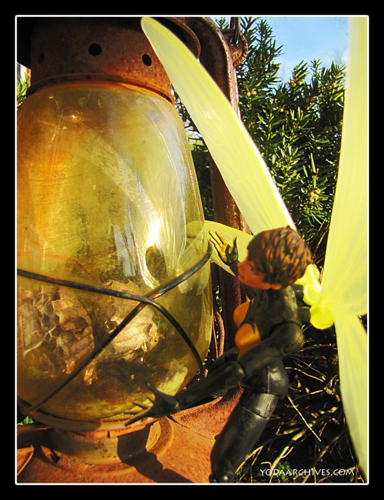 Avenger, the Wasp is miniaturized and squatted on the side of a old glass and metal lantern. There are wasp empty nests inside the rusted lantern. She is looking at the nest. Her reflection is on the glass.